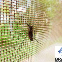 tela-mosquiteira_bratox