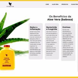 Os Benefícios da Aloe vera 2