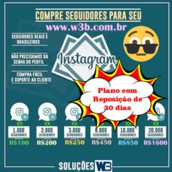 seguidores-instagram2